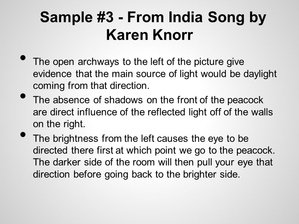Sample #3 - From India Song by Karen Knorr The open archways to the left of the picture give evidence that the main source of light would be daylight