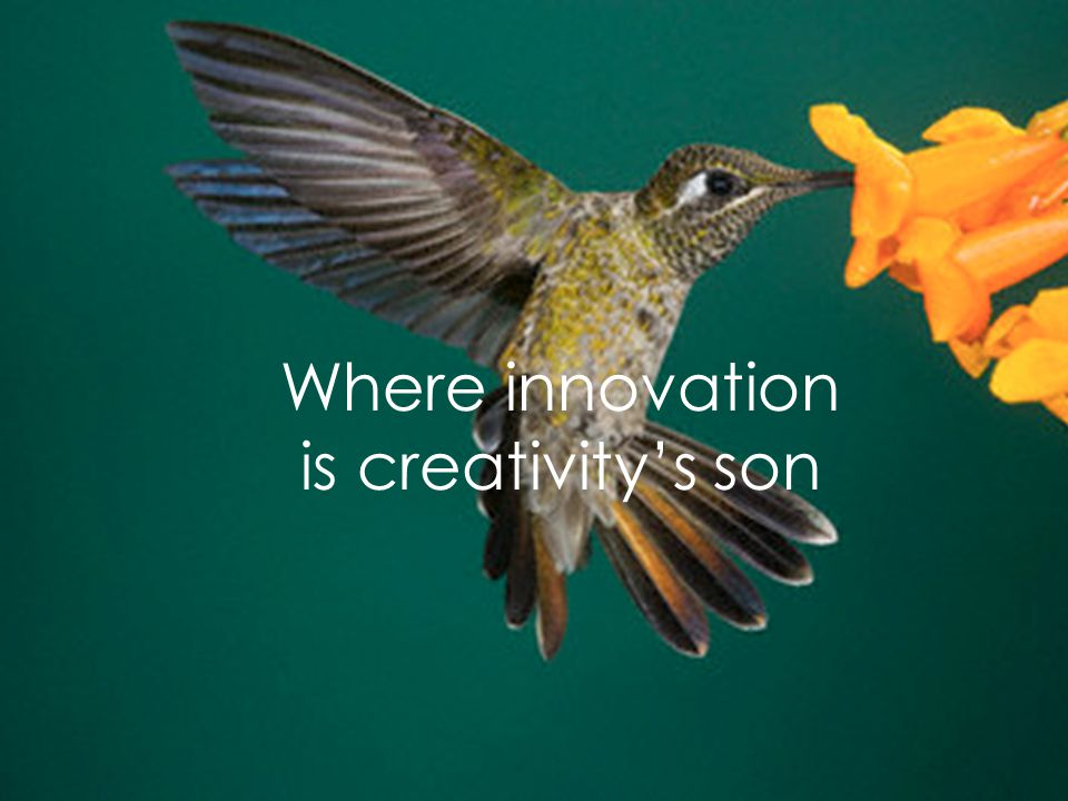 In a so fervent country of genius and industriousness Where innovation is creativity's son