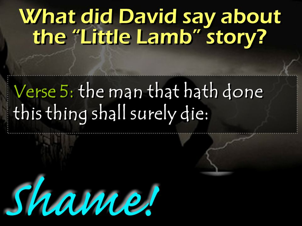 What did David say about the Little Lamb story.