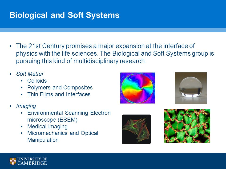 Biological and Soft Systems The 21st Century promises a major expansion at the interface of physics with the life sciences.