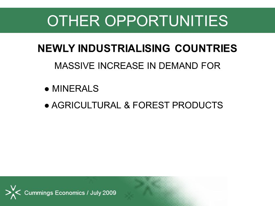 Cummings Economics / July 2009 OTHER OPPORTUNITIES ● MINERALS ● AGRICULTURAL & FOREST PRODUCTS NEWLY INDUSTRIALISING COUNTRIES MASSIVE INCREASE IN DEMAND FOR
