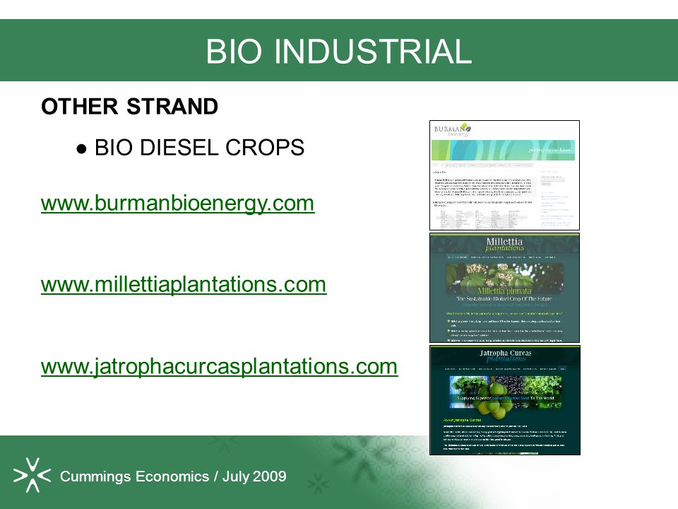 Cummings Economics / July 2009 BIO INDUSTRIAL OTHER STRAND ● BIO DIESEL CROPS www.burmanbioenergy.com www.millettiaplantations.com www.jatrophacurcasplantations.com