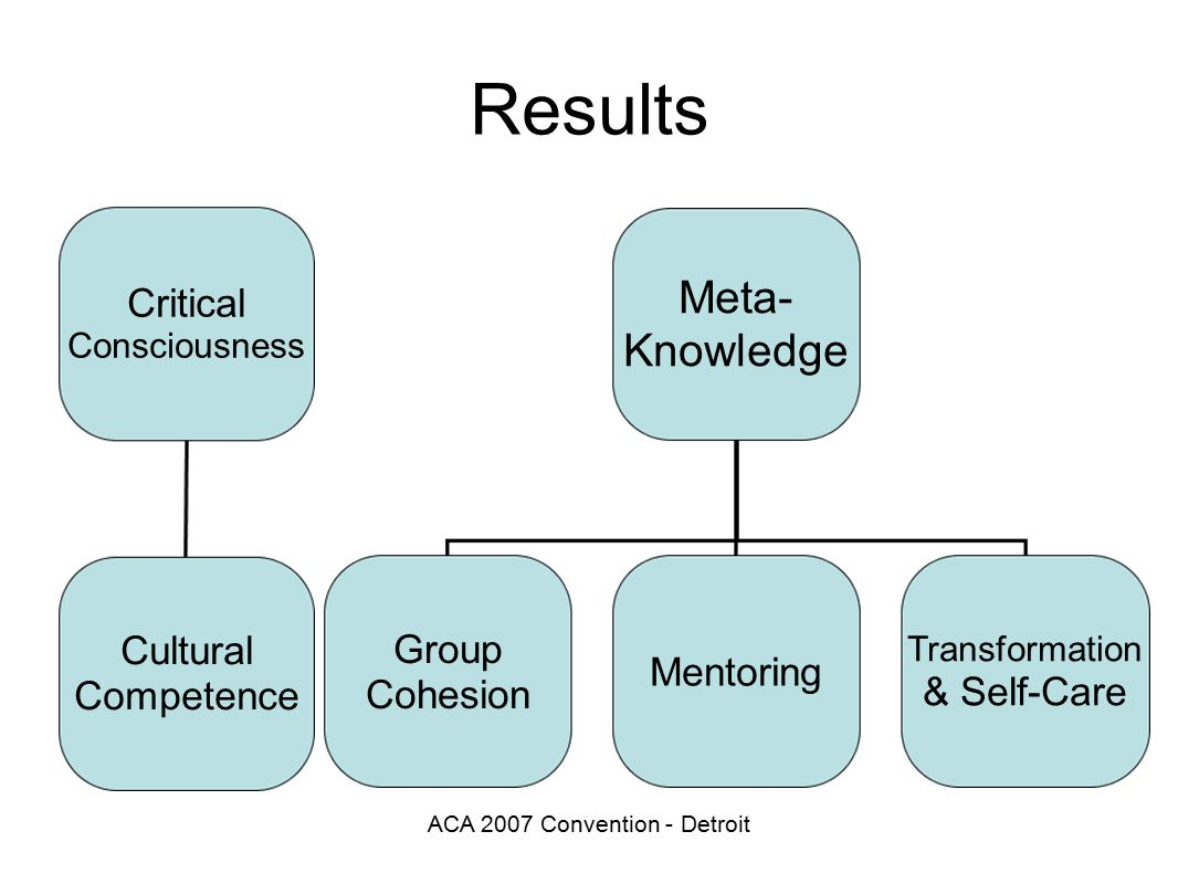 ACA 2007 Convention - Detroit Results Critical Consciousness Cultural Competence Meta- Knowledge Group Cohesion Mentoring Transformation & Self-Care