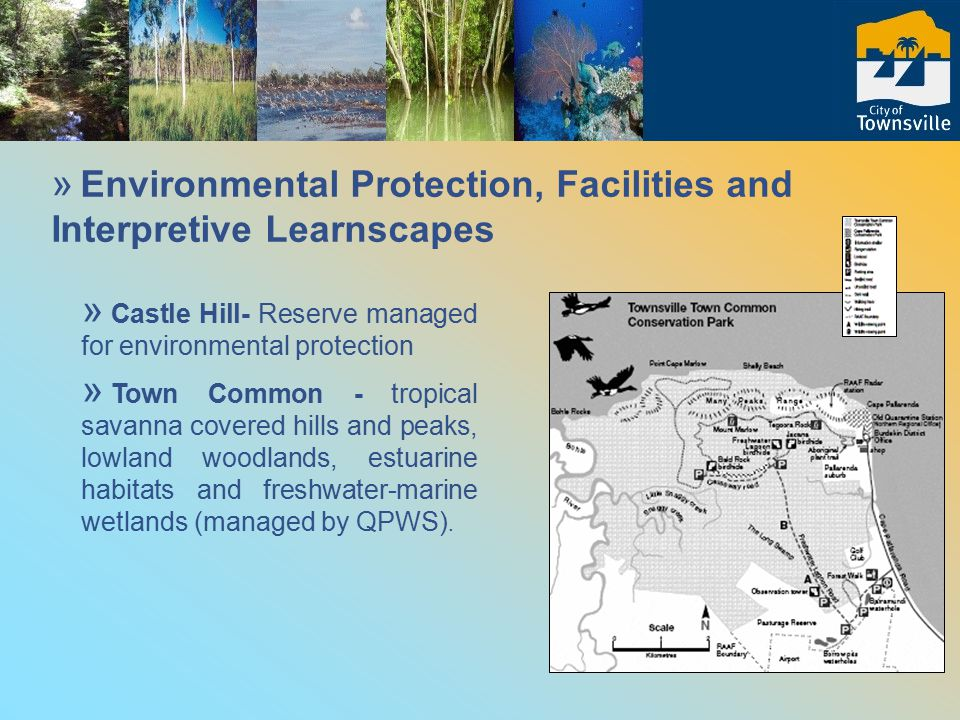 » Environmental Protection, Facilities and Interpretive Learnscapes » Castle Hill- Reserve managed for environmental protection » Town Common - tropical savanna covered hills and peaks, lowland woodlands, estuarine habitats and freshwater-marine wetlands (managed by QPWS).