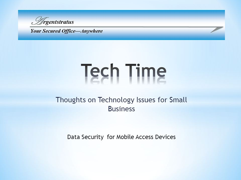 Thoughts on Technology Issues for Small Business Data Security for Mobile Access Devices