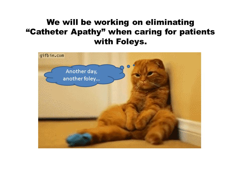 Relax, we will be introducing tools to help elevate practice and to help bring catheter care to the forefront of the clinician's mind.