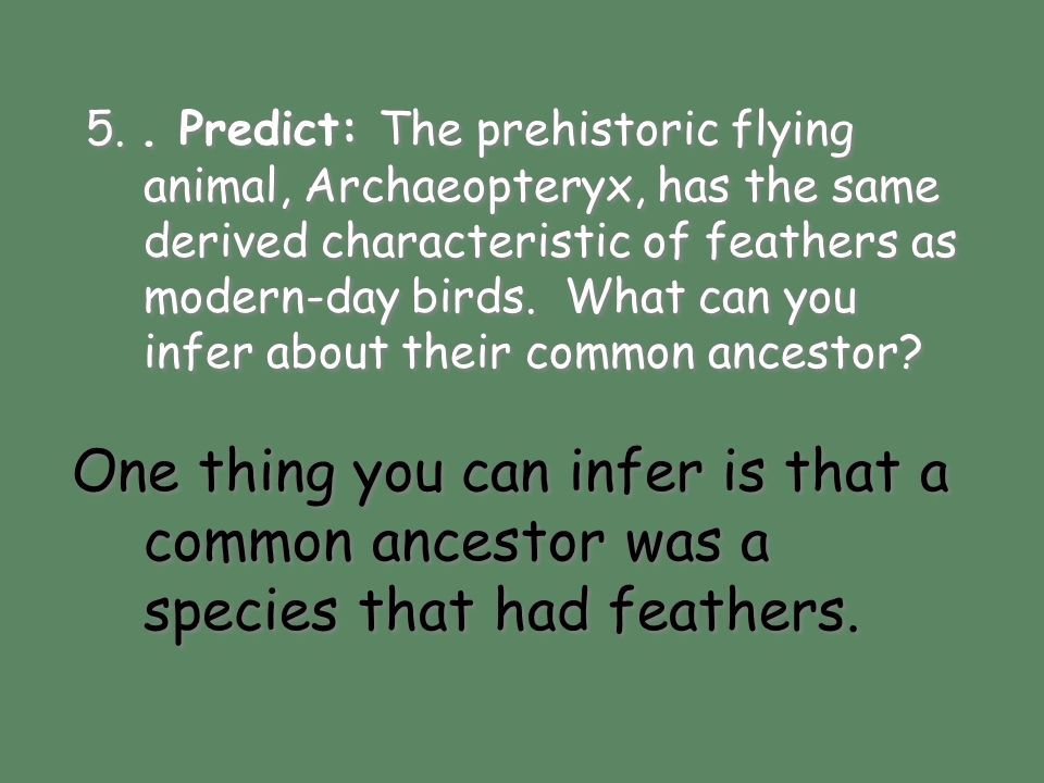 5.. Predict: The prehistoric flying animal, Archaeopteryx, has the same derived characteristic of feathers as modern-day birds. What can you infer abo