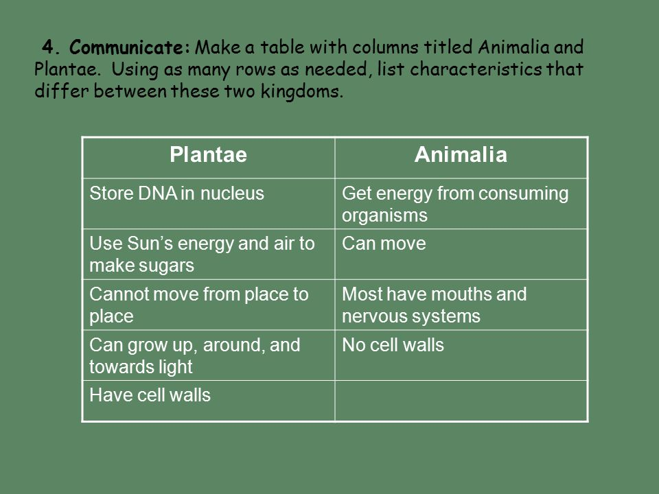 PlantaeAnimalia Store DNA in nucleusGet energy from consuming organisms Use Sun's energy and air to make sugars Can move Cannot move from place to pla