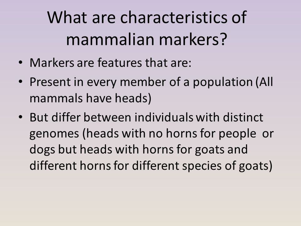 What are characteristics of mammalian markers? Markers are features that are: Present in every member of a population (All mammals have heads) But dif