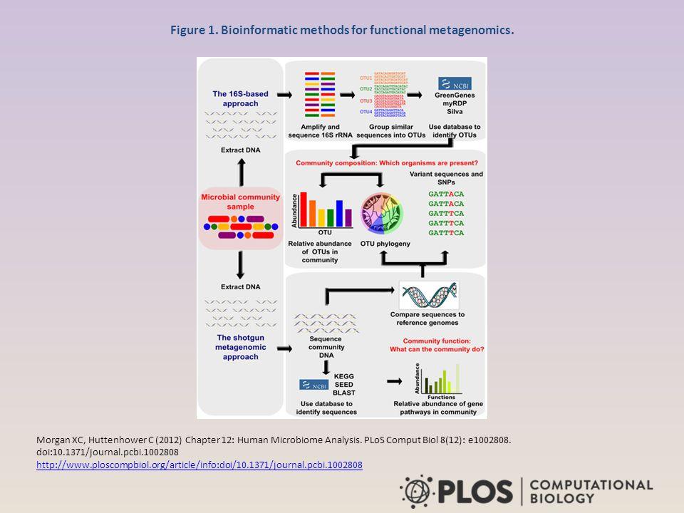 Figure 1. Bioinformatic methods for functional metagenomics. Morgan XC, Huttenhower C (2012) Chapter 12: Human Microbiome Analysis. PLoS Comput Biol 8