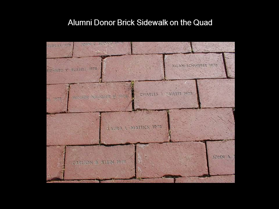Alumni Donor Brick Sidewalk on the Quad
