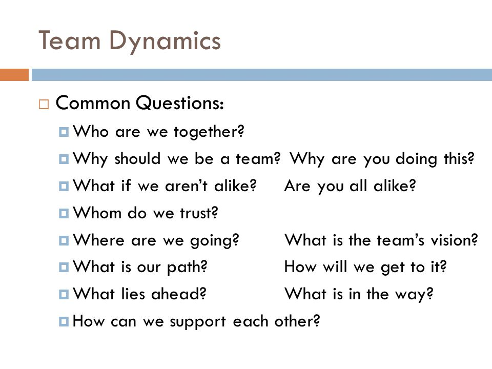 Team Dynamics  Common Questions:  Who are we together.