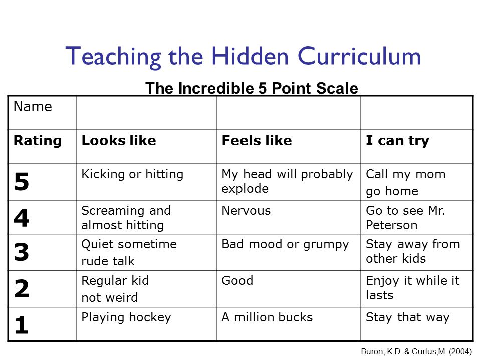 Teaching the Hidden Curriculum Name RatingLooks likeFeels likeI can try 5 Kicking or hittingMy head will probably explode Call my mom go home 4 Scream