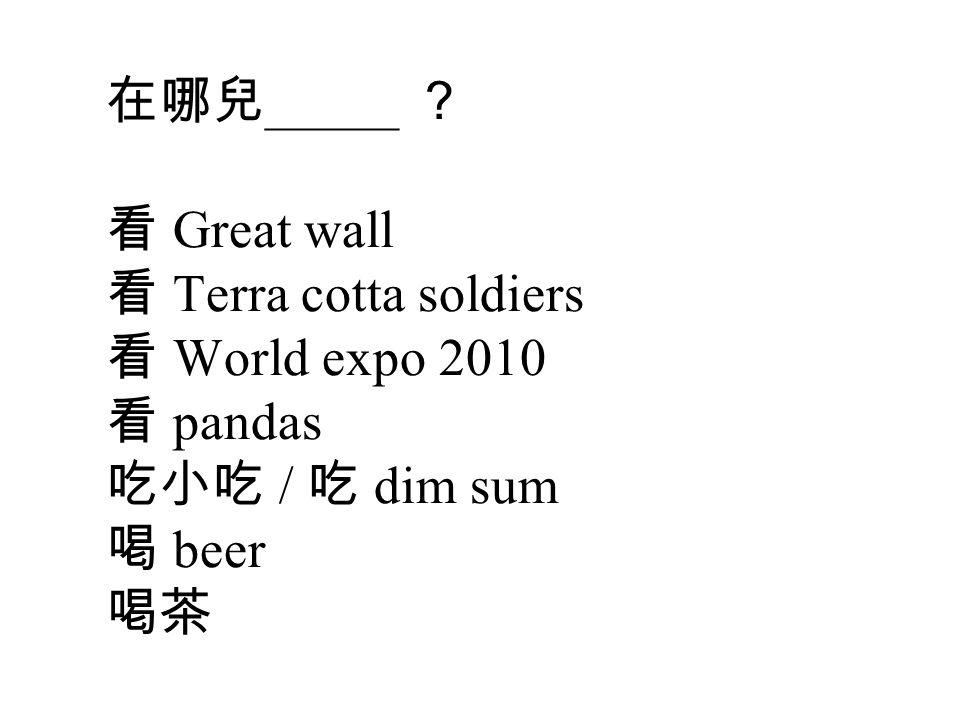 在哪兒 _____ ? 看 Great wall 看 Terra cotta soldiers 看 World expo 2010 看 pandas 吃小吃 / 吃 dim sum 喝 beer 喝茶