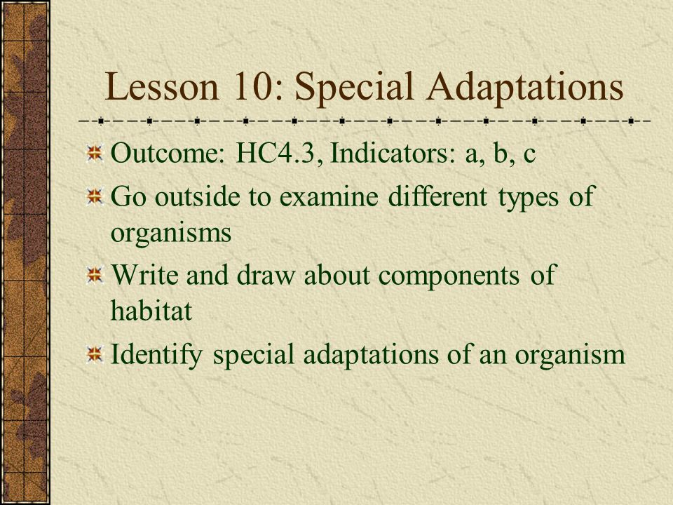 Lesson 10: Special Adaptations Outcome: HC4.3, Indicators: a, b, c Go outside to examine different types of organisms Write and draw about components