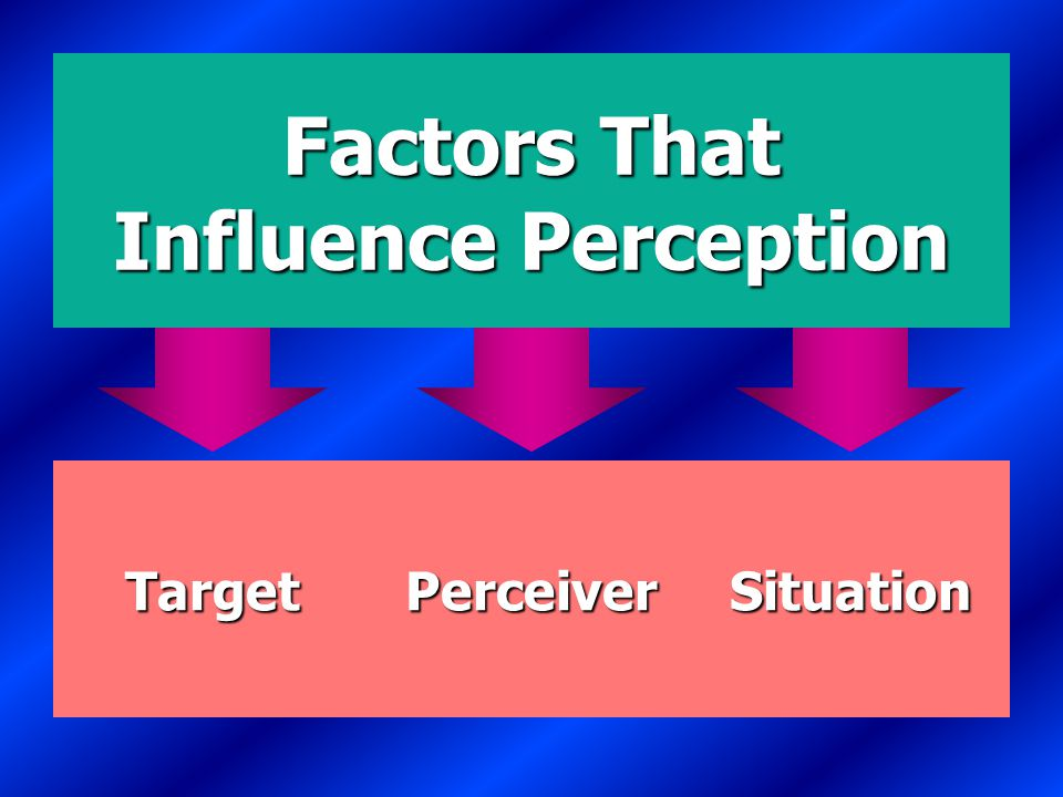 Factors That Influence Perception E X H I B I T 5-1