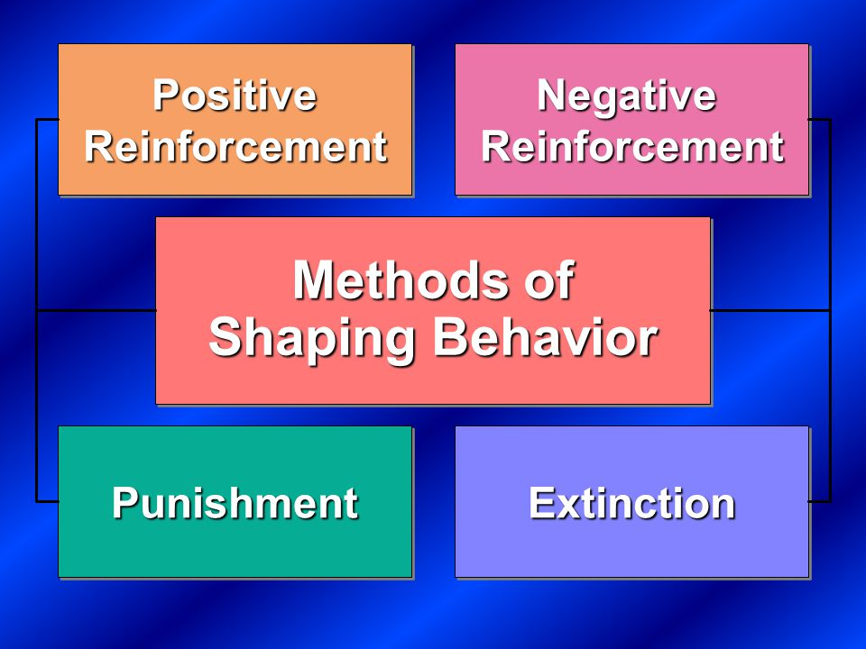 Theories of Learning Key Concepts Reflexive (unlearned) behavior Conditioned (learned) behavior Reinforcement Key Concepts Reflexive (unlearned) behavior Conditioned (learned) behavior Reinforcement