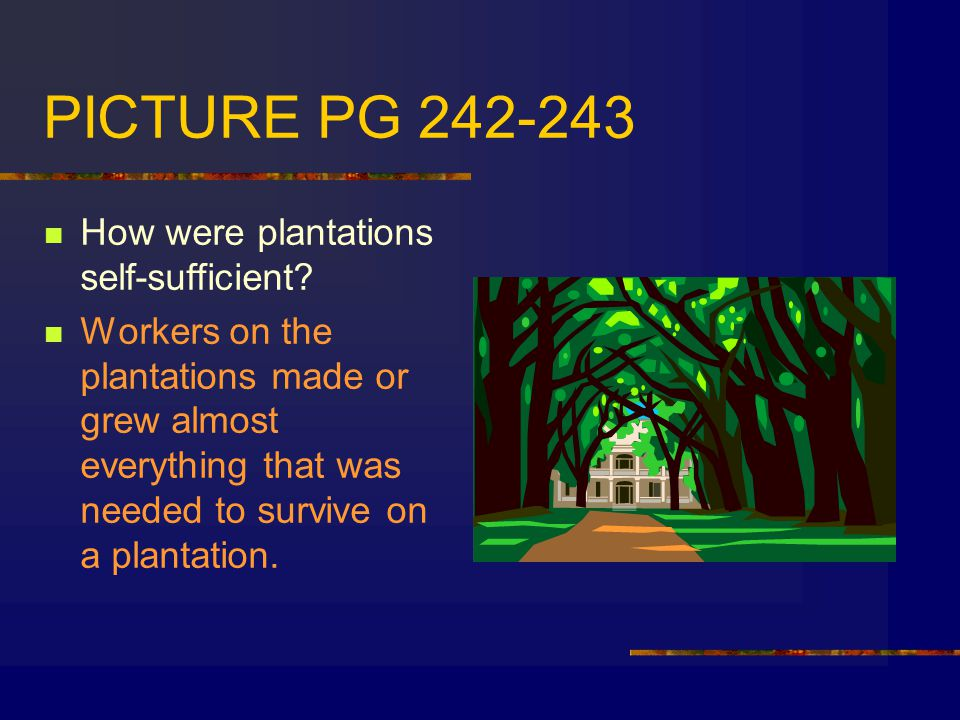 PICTURE PG 242-243 How were plantations self-sufficient.