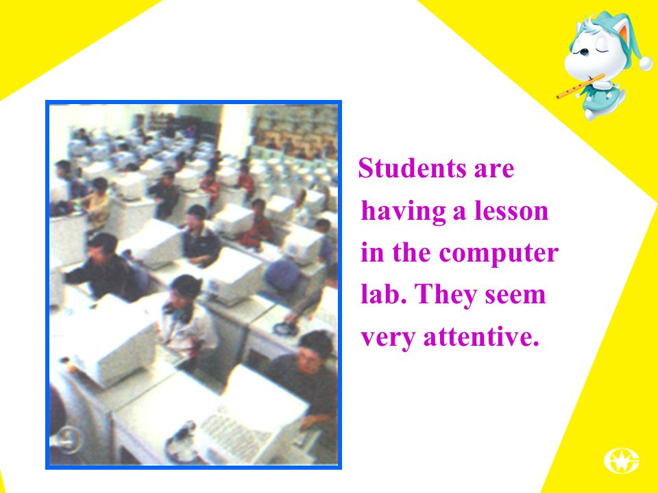Students are having a lesson in the computer lab. They seem very attentive.