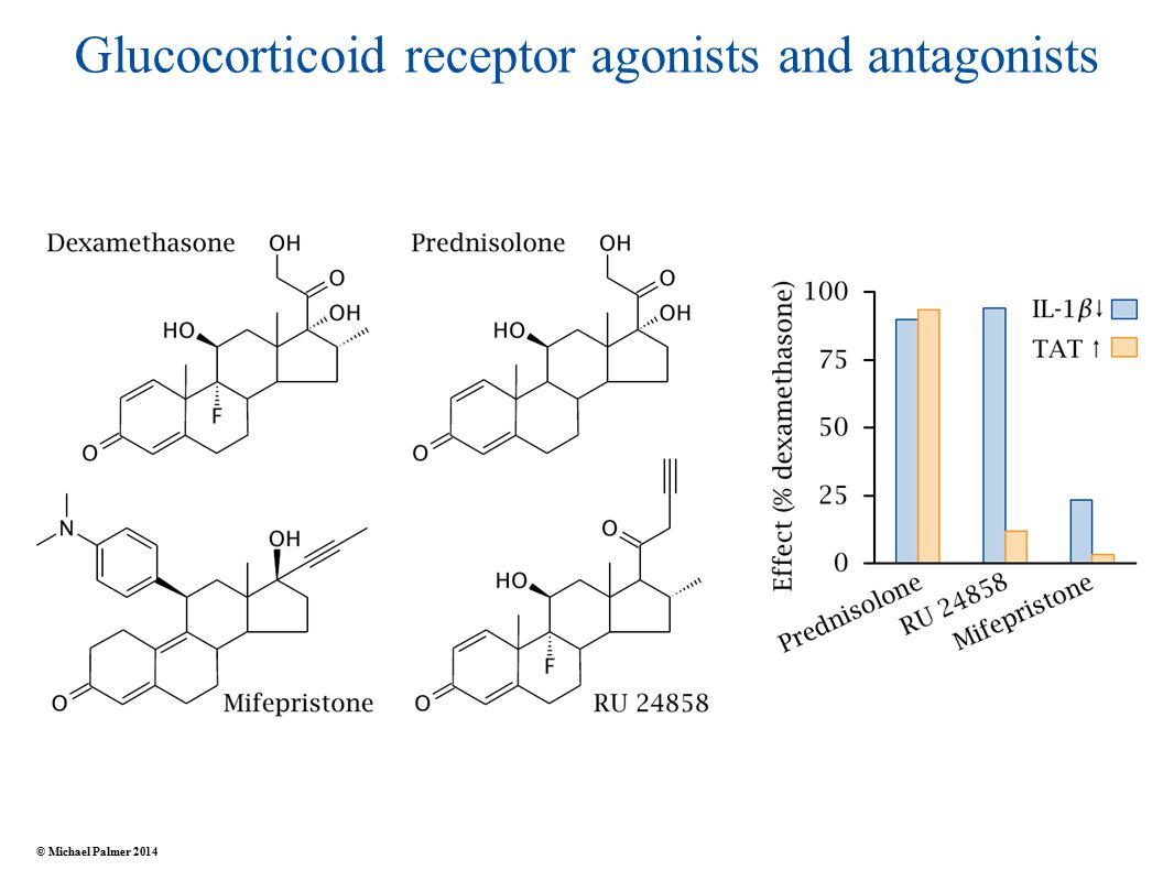 Glucocorticoid receptor agonists and antagonists © Michael Palmer 2014