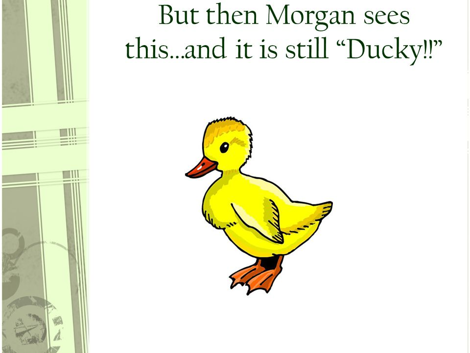 But then Morgan sees this…and it is still Ducky!!