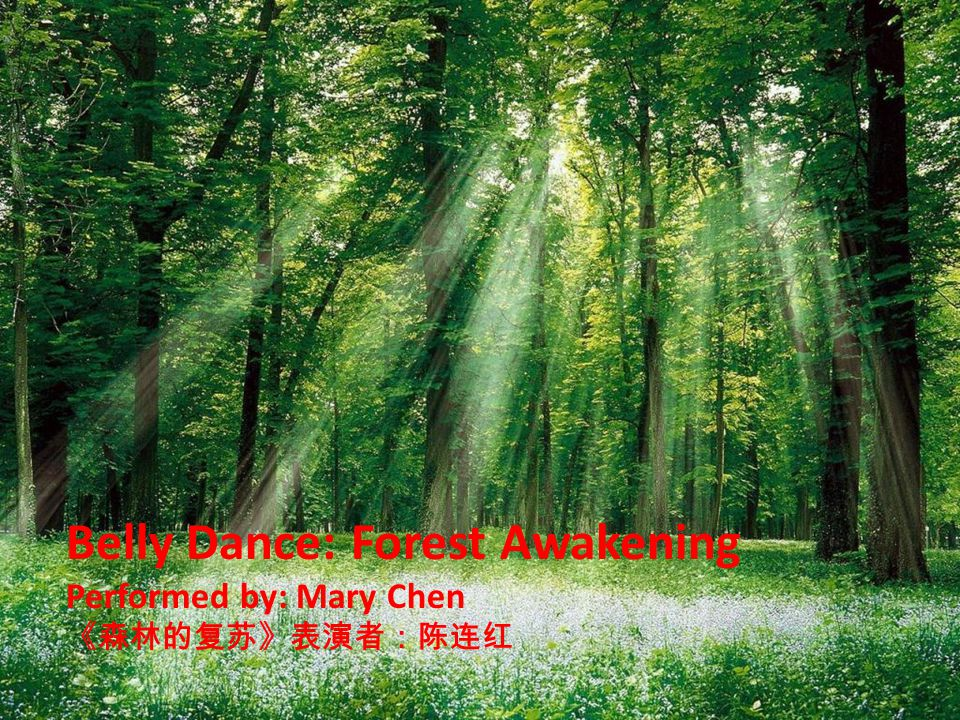 Belly Dance: Forest Awakening Performed by: Mary Chen 《森林的复苏》表演者:陈连红