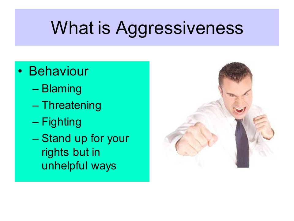 What is Aggressiveness Behaviour –Blaming –Threatening –Fighting –Stand up for your rights but in unhelpful ways