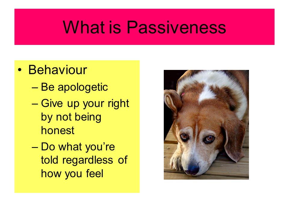 What is Passiveness Behaviour –Be apologetic –Give up your right by not being honest –Do what you're told regardless of how you feel