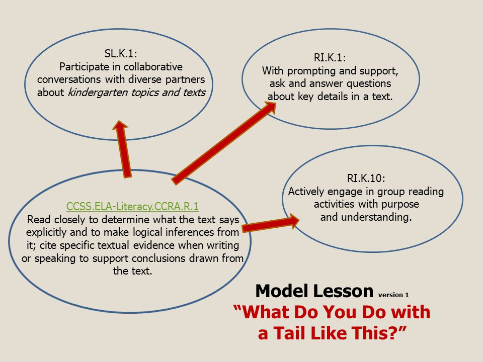 Model Lesson version 1 What Do You Do with a Tail Like This SL.K.1: Participate in collaborative conversations with diverse partners about kindergarten topics and texts RI.K.1: With prompting and support, ask and answer questions about key details in a text.