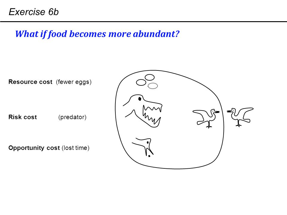 Exercise 6b What if food becomes more abundant.