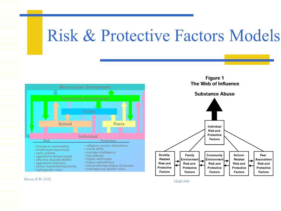 Risk & Protective Factors Models Gibson, D. B. (2003) CSAP 1999