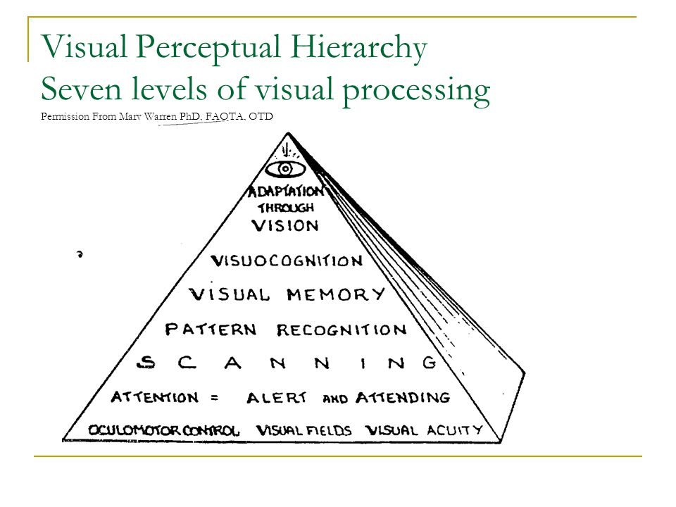 Visual Perceptual Hierarchy Seven levels of visual processing Permission From Mary Warren PhD, FAOTA, OTD