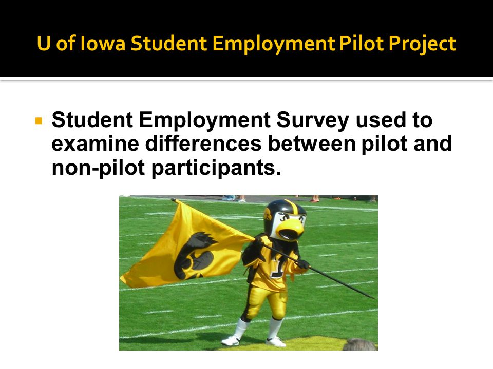 U of Iowa Student Employment Pilot Project  Student Employment Survey used to examine differences between pilot and non-pilot participants.