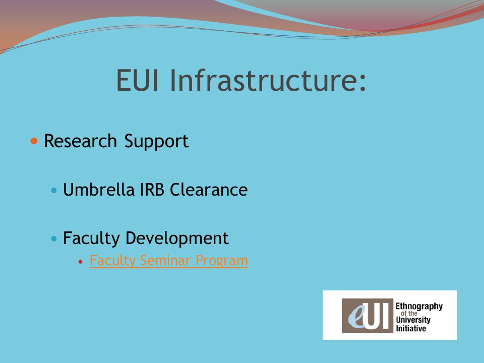 EUI Infrastructure: Research Support Umbrella IRB Clearance Faculty Development Faculty Seminar Program