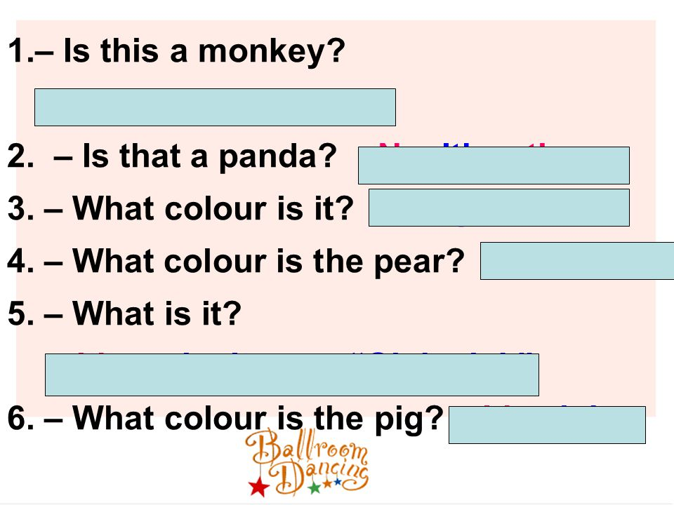 1.– Is this a monkey. -- Yes, it's a monkey. 2. – Is that a panda.