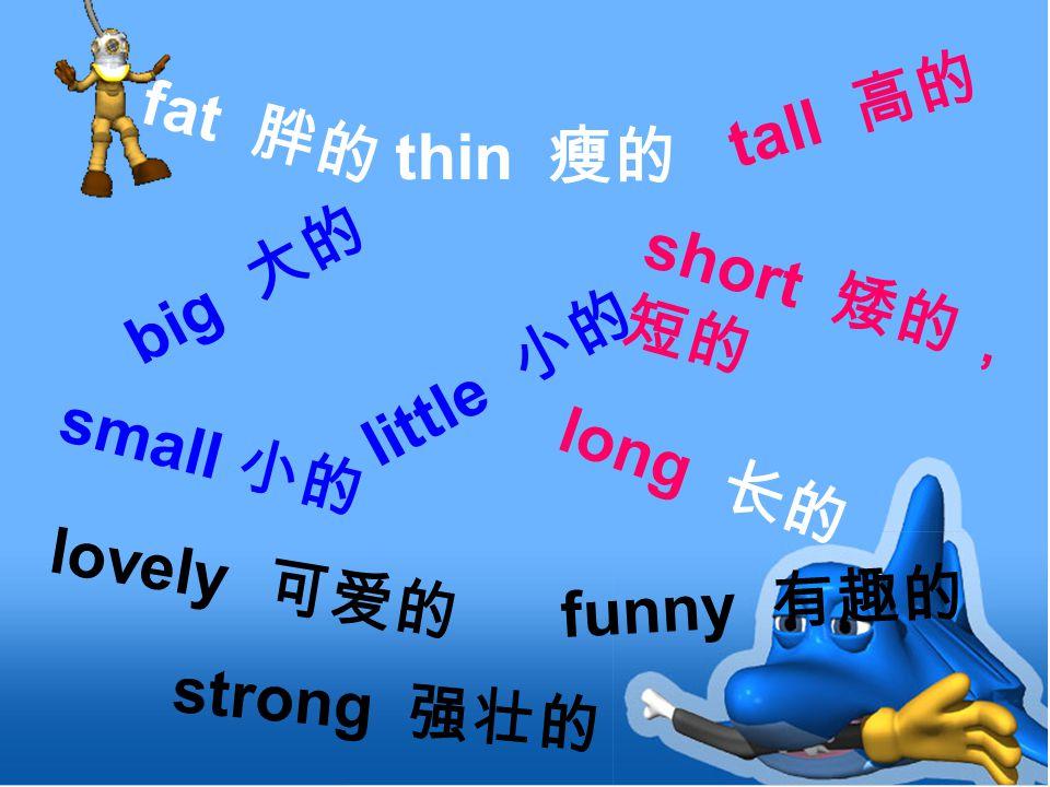 long 长的 fat 胖的 thin 瘦的 small 小的 tall 高的 big 大的 short 矮的, 短的 strong 强壮的 little 小的 funny 有趣的 lovely 可爱的