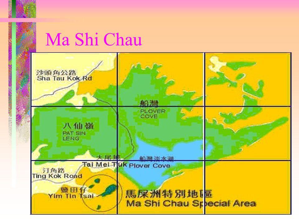 Ma Shi Chau