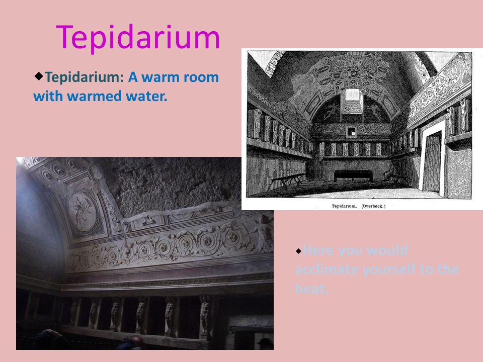 Tepidarium  Tepidarium: A warm room with warmed water.  Here you would acclimate yourself to the heat.