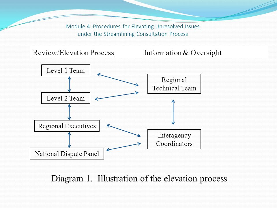 Module 4: Procedures for Elevating Unresolved Issues under the Streamlining Consultation Process Review/Elevation Process Information & Oversight Level 1 Team Level 2 Team Interagency Coordinators Regional Technical Team Regional Executives National Dispute Panel Diagram 1.