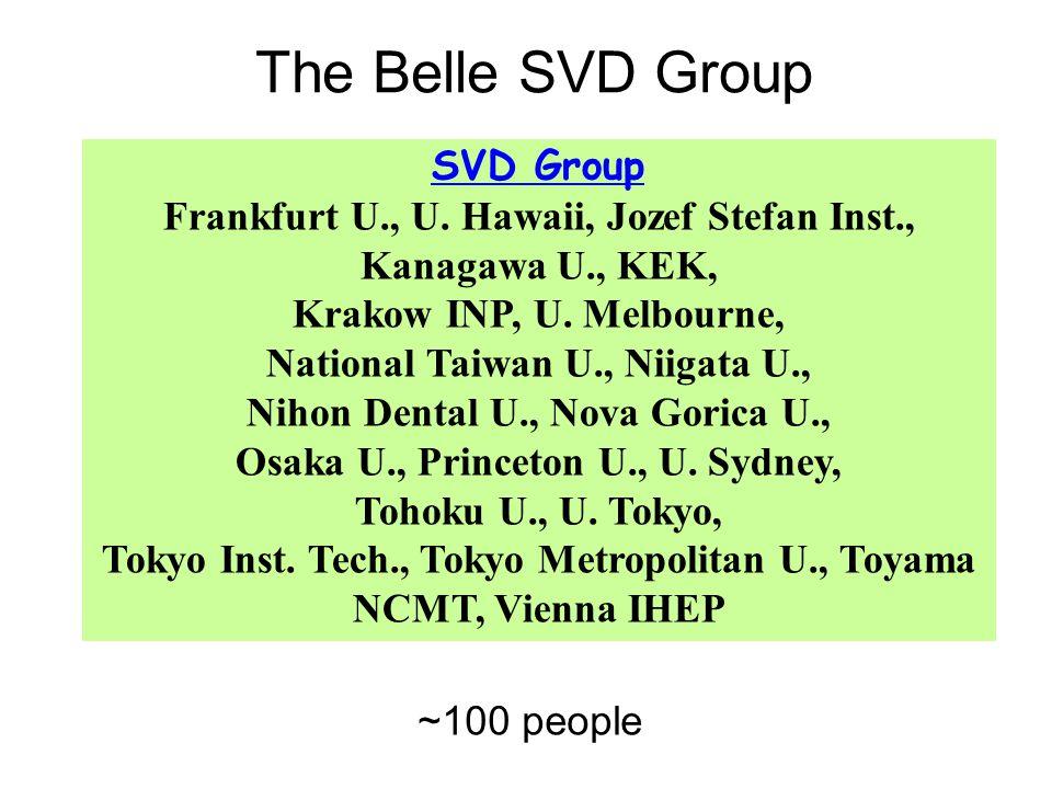 SVD Group Frankfurt U., U. Hawaii, Jozef Stefan Inst., Kanagawa U., KEK, Krakow INP, U.