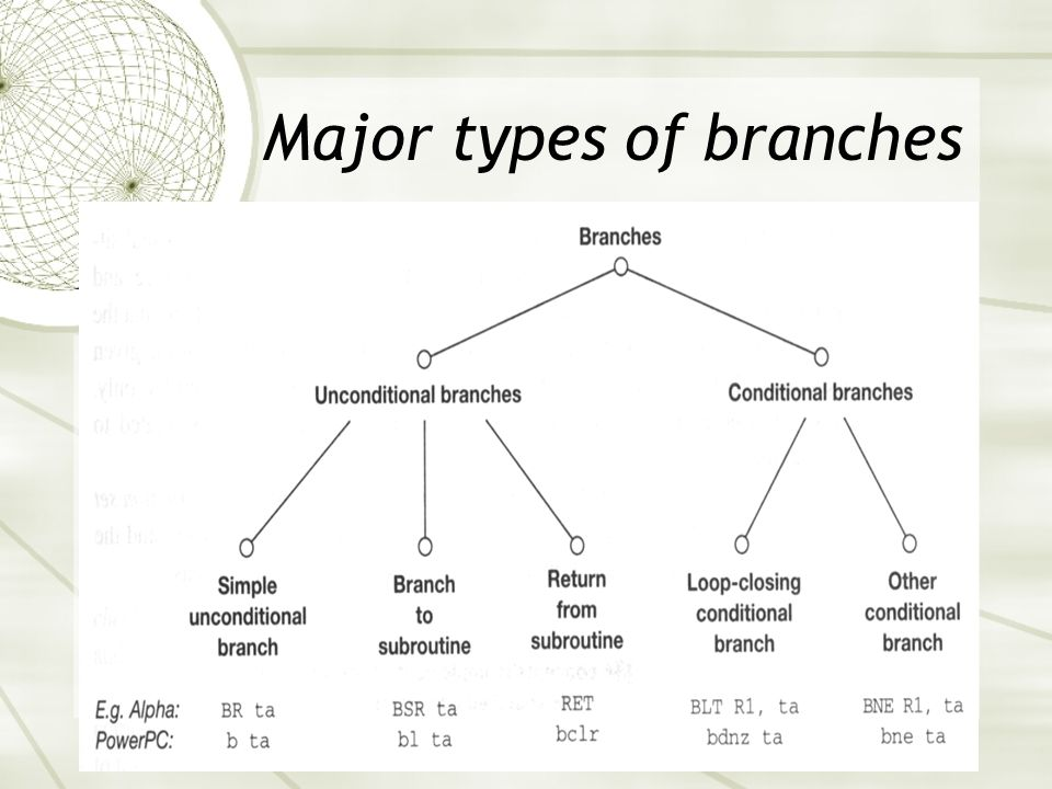 Major types of branches