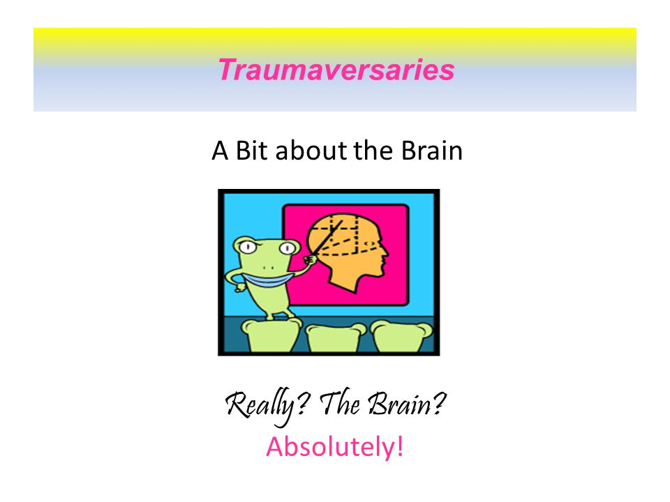 A Bit about the Brain Traumaversaries Really The Brain Absolutely!