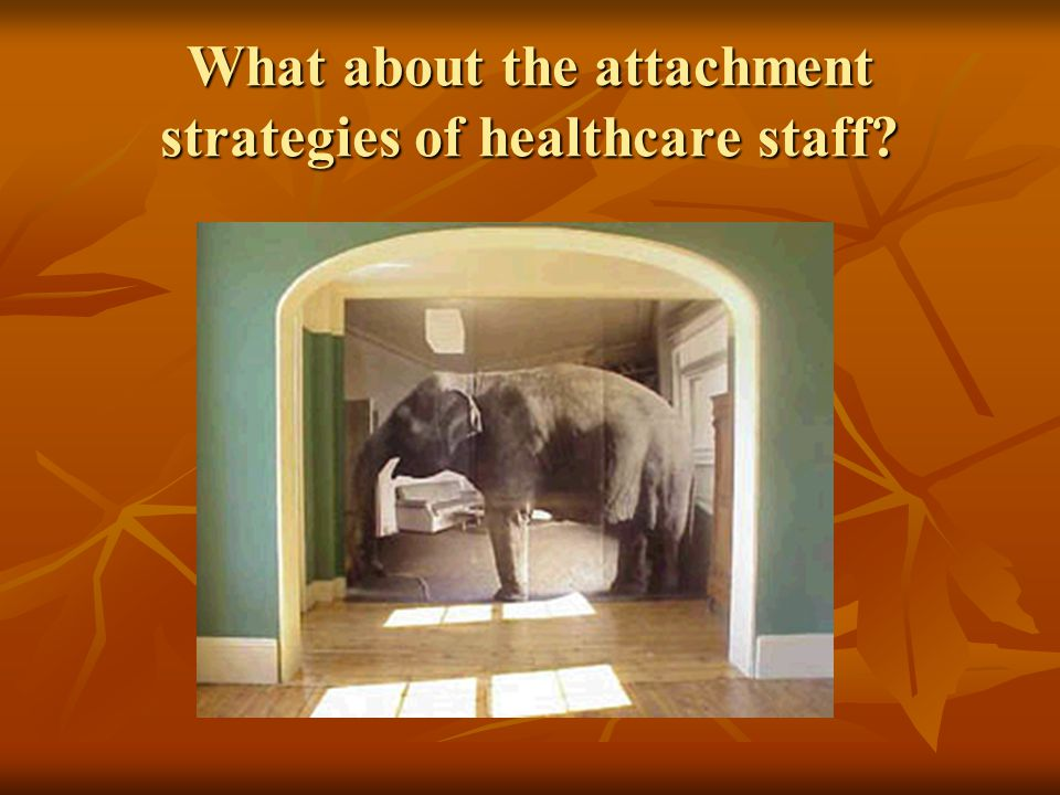 What about the attachment strategies of healthcare staff?
