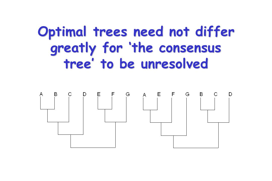 Adams-2 Consensus Adams (1972) method was defined by a recursive algorithm, which, beginning at the root, identifies common sub-clusters using intersection rules (product partitions) The basal splits in these trees yield the four clusters ABC, EFD, AC & BEFD.