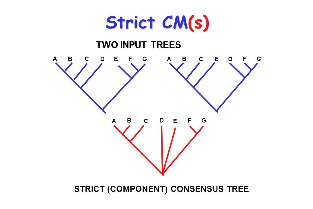 Interpreting Polytomies Polytomies in trees have alternative interpretations.Polytomies in trees have alternative interpretations.