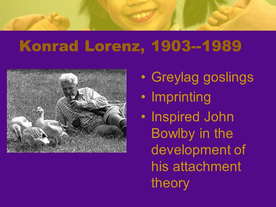 Konrad Lorenz, 1903--1989 Greylag goslings Imprinting Inspired John Bowlby in the development of his attachment theory