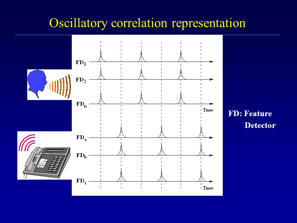 Oscillatory correlation theory for ASA l Neural oscillators are used to represent auditory features l Oscillators representing features of the same so