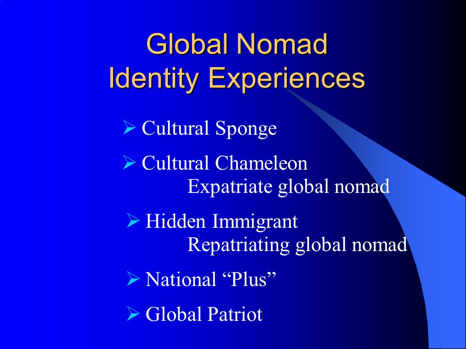 Global Nomad Identity Experiences  Cultural Chameleon Expatriate global nomad  Hidden Immigrant Repatriating global nomad  National Plus  Global Patriot  Cultural Sponge