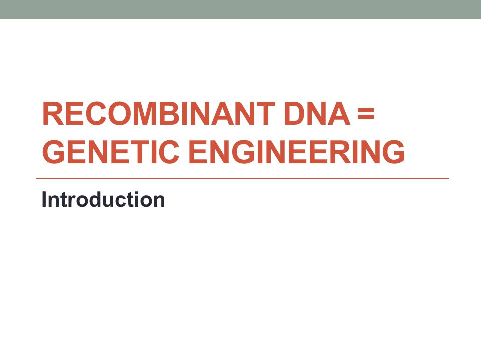 Tools of Genetics: Recombinant DNA and Cloning Read pp.
