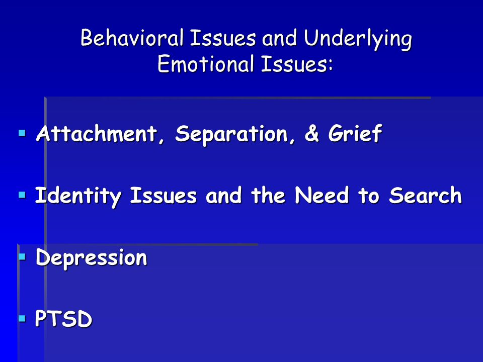 Behavioral Issues and Underlying Emotional Issues:  Attachment, Separation, & Grief  Identity Issues and the Need to Search  Depression  PTSD